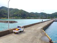 請島の池地港 - 桟橋は結構長い