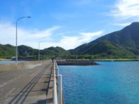 請島の池地港 - 桟橋でも海の青さは格別です