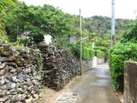 与路島の与路の道 - 島中央の道もいい雰囲気