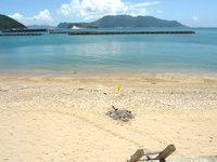 与路島の与路のビーチ - 泳ぐ感じではなくのんびりする感じ