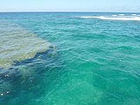 与路島の高原海岸桟橋 - 透明度は抜群ですが波が荒い