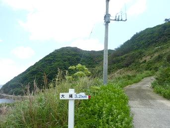 大縄/ナブリュウ崎への前半の道