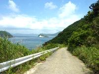 与路島の大縄/ナブリュウ崎への前半の道 - ハンミャ島が目印になります