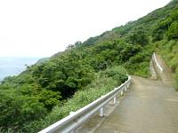 与路島「大縄/ナブリュウ崎途中の見晴台」