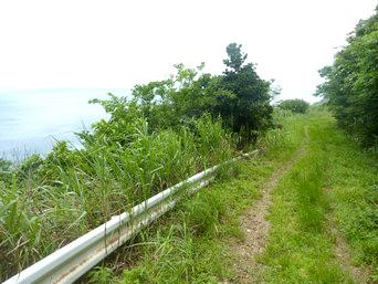 与路島の大縄/ナブリュウ崎への後半の道