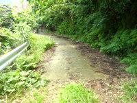 与路島の大縄/ナブリュウ崎への後半の道 - 時折、舗装路に遭遇します