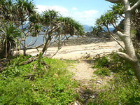 与路島のナブリュウ崎近くの浜 - 砂浜入口にはカラスが多かった