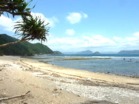 与路島のナブリュウ崎近くの浜 - 砂浜は自然のままで人が来た形跡は皆無