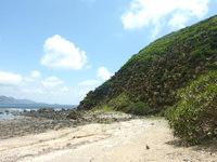 与路島のナブリュウ崎近くの浜 - ソテツの木が与路島には多い