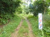与路島の大縄/ナブリュウ崎の奥の道 - 何故か工事中の看板がある・・・