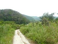 請島の石川道への前半の道 - しばらくは細いながらも舗装路