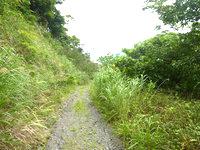 請島の石川道への後半の道 - 基本的に舗装していない道