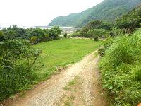 請島の石川道の浜 - 海近くは意外と整備されている?