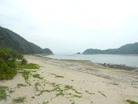 請島の石川道の浜 - 砂浜は自然のままの感じ