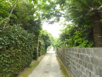 請島の大山登山口への道