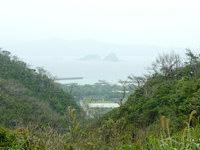 請島の大山登山口への道 - 池地集落が望める場所もあります