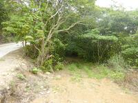 請島の大山登山口への道 - 脇に降りることが出来そうですがかなり微妙