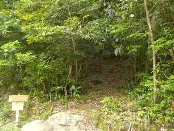 請島の大山ミヨチョン岳昇り口「これが大山の登山口です」
