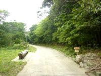 請島の大山ミヨチョン岳昇り口 - 登山口前には丸太のベンチ的なものが有り
