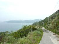 請島の計良治崎への道 - 岬からだと海へ向かって降りていく道