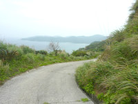 請島の計良治崎への道 - 道とその先の景色がいい感じ