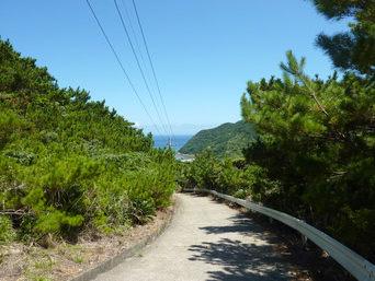 与路島の与路島の山道「与路島の山から集落へと続く道」