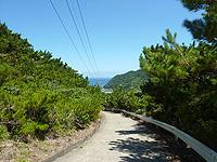 与路島の山道