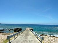 与路島の高原海岸/ソテツ群生地 - この桟橋というか一本道が特徴