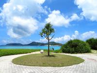 阿真ビーチ(沖縄本島離島/座間味島のビーチ/砂浜)