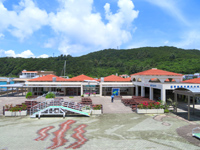 座間味島の座間味港/フェリーターミナル - フェリーも高速艇もここで発着