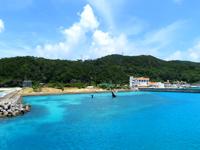 座間味島の鯨のオブジェ - これは集落側の港にあります