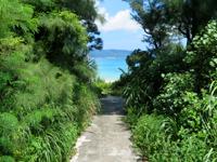 座間味島の阿護の浦のプライベートビーチ - まさに阿護の浦が一望です