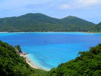 座間味島の阿護の浦 - ちょっとしたビーチもあります