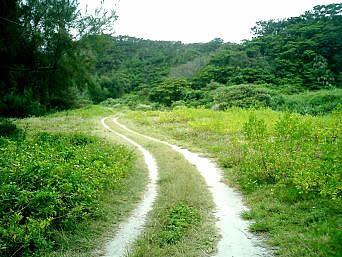 座間味島の東端の岬「岬まで至る道がとってもいい感じでした」