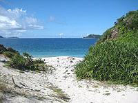 座間味島の東端の岬 - 海へと抜ける道までは遠い・・・
