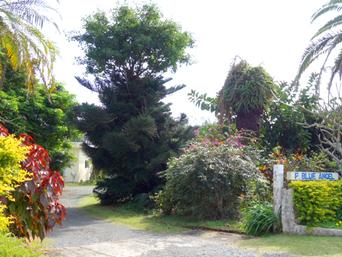 奄美大島のシーサイドペンション ブルーエンゼル