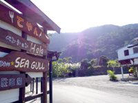 奄美大島のペンションハーラ/カフェレストランてやん - 食堂・宿・ダイビング併設