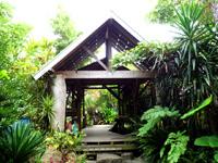 奄美大島の奄美海族塾/食事処遊楽里 - 集落内だけどジャングルの中みたい