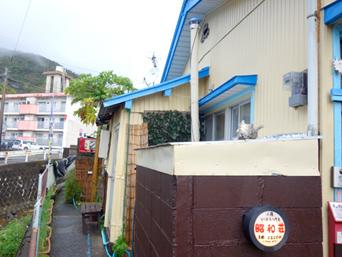 奄美大島の昭和荘