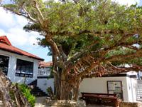 奄美大島の奄美リゾート ばしゃ山村 - 用安海岸からの入口