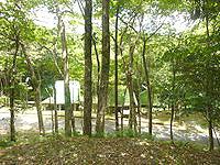 奄美大島の奄美フォレストポリス/キャンプ場 - キャンプ場はこんな感じ