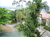 中部のココガーデンリゾートオキナワ - コテージ風のホテルとその庭