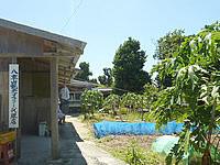 鳩間島の素泊まり あやぐ - 庭はそこそこの広さがあります