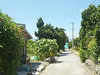 鳩間島の素泊まり あやぐ - 鳩間港から北へ向かう道路沿い