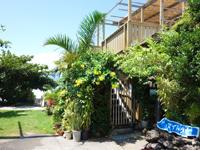 鳩間島のペンション マイトウゼ - 宿の食事はここ「シーサイドマイトウゼ」で!