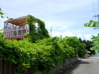 鳩間島の民宿まるだい - 2階のテラスができたが怖そう・・・