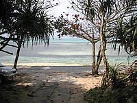 北部の貸別荘ふくぎハウス - 近くの備瀬の海はこんな感じ