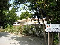 Fukugi Terrace/フクギテラス