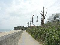 北部のカーサ ドゥマイ ビーチホテルオキナワ/CASA DUMAI BEACH HOTEL OKINAWA - オーシャンビューではあると思います