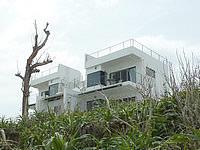 北部のカーサ ドゥマイ ビーチホテルオキナワ/CASA DUMAI BEACH HOTEL OKINAWA - 今泊の浜から見上げた様子
